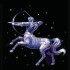 Знак зодиака декабрь