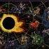 Характеристика знаков Зодиака, знаки зодиака по месяцам,
