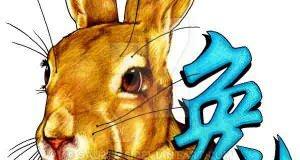 кролик знак зодиака