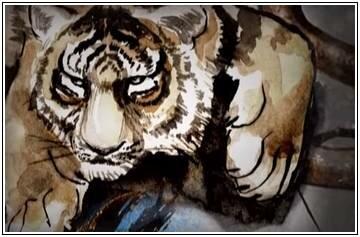 Женщина Тигр