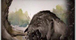 Мужчина кабан, свинья